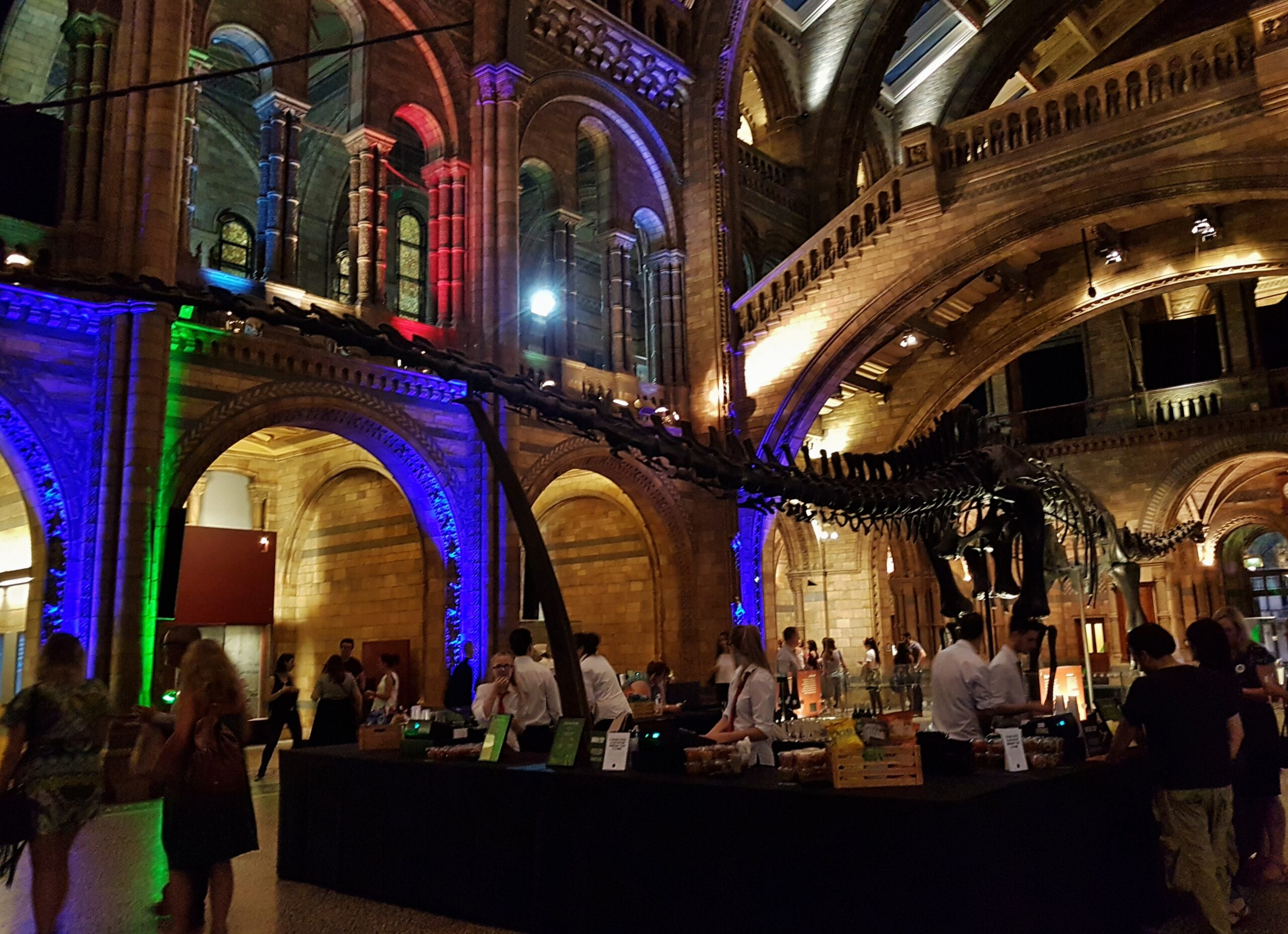 Natural History Museum Silent Disco - Sehee in the World