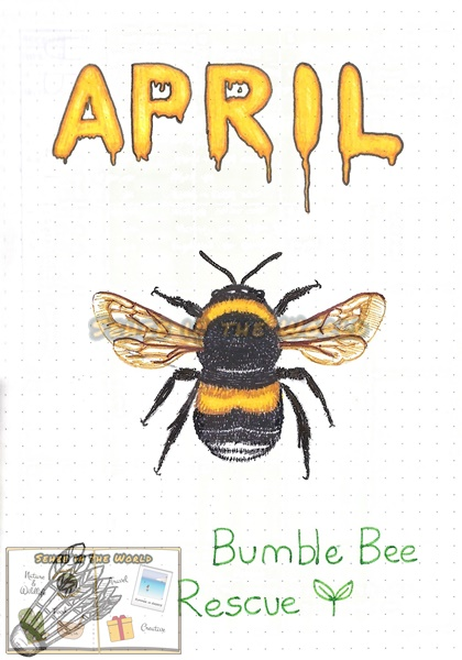 Bullet journal cover ideas for wildlife lovers - my April page design: bumblebee, drawn by. Sehee in the World