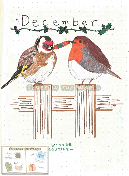 Bullet journal cover ideas for wildlife lovers - my December page design: goldfinch and robin, drawn by. Sehee in the World