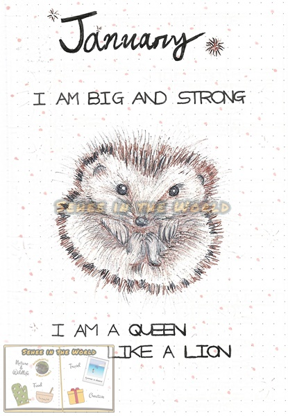 Bullet journal cover ideas for wildlife lovers - my January page design: hedgehog, drawn by. Sehee in the World
