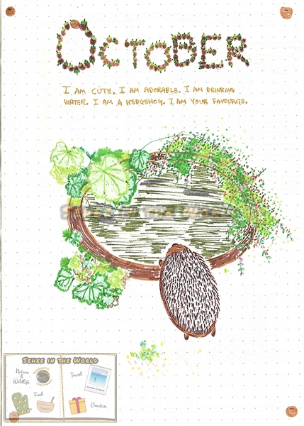 Bullet journal cover ideas for wildlife lovers - my October page design: hedgehog, drawn by. Sehee in the World