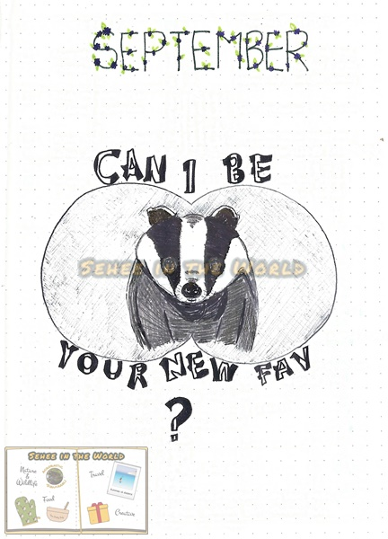 Bullet journal cover ideas for wildlife lovers - my September page design: badger, drawn by. Sehee in the World